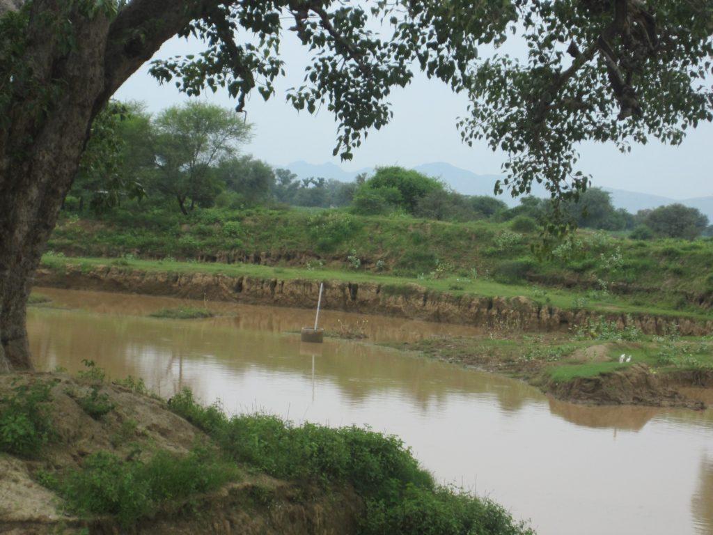 silveron-rainwater-silt